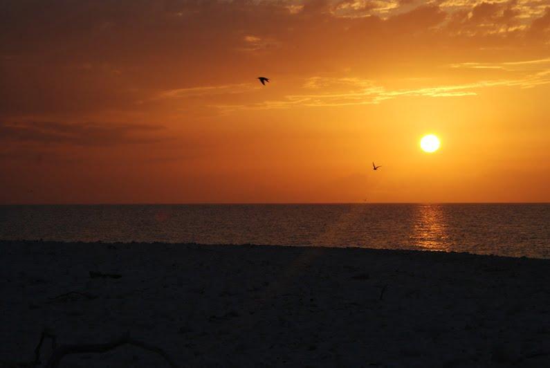Sunset, Wilson Island