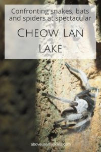 A fantastic two day tour of Cheow Lan Lake in Khao Sok National Park, Thailand...