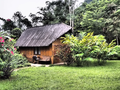 Chiang Dao Nest 2