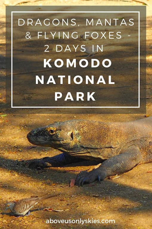 A two-day boat trip around the fabulous Komodo National Park, Flores, Indonesia