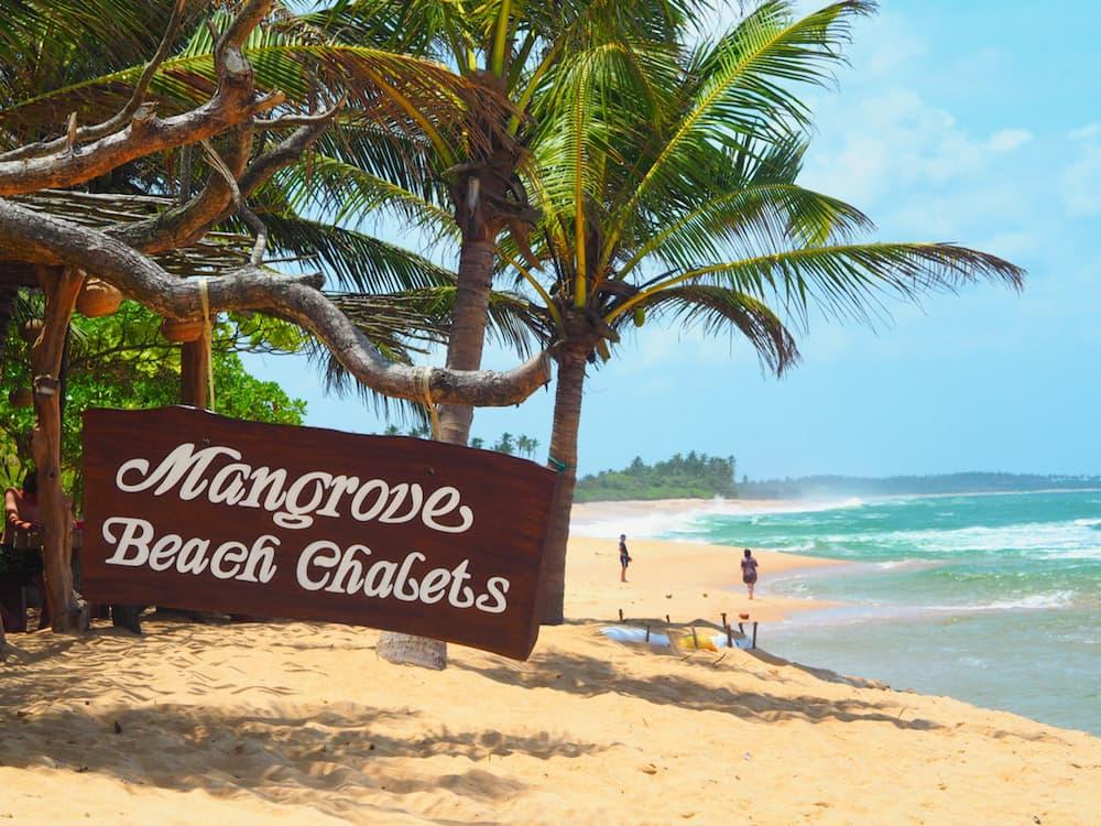 Mangrove Beach Chalets