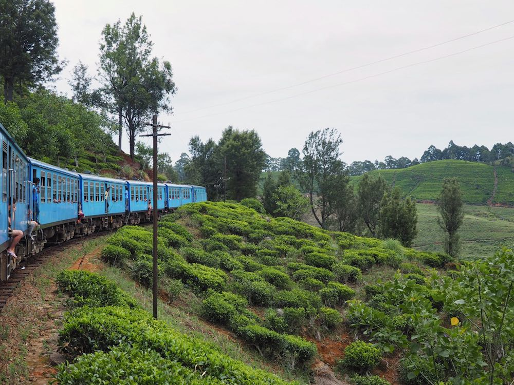 The scenic train journey  from Ella to Kandy