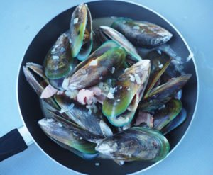 Hand-picked green lip mussels