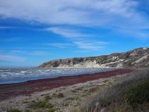 Marfells Beach