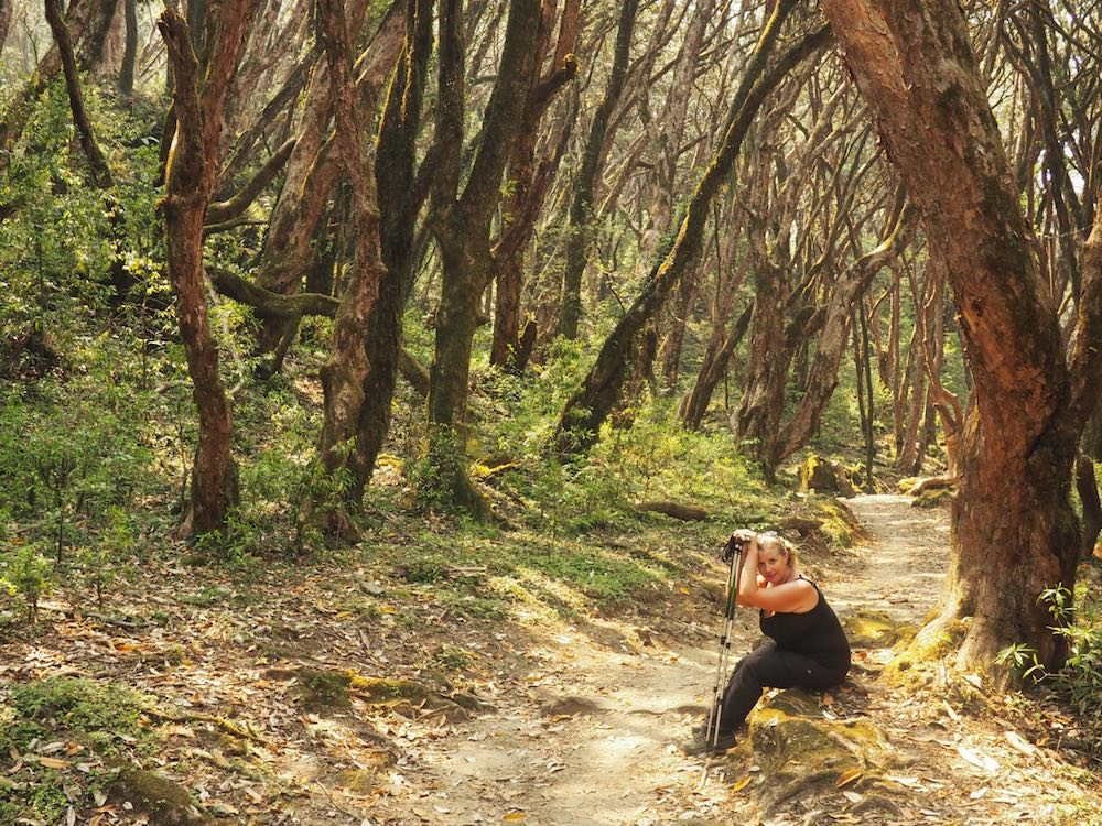 Nicky sits down in a forest using a walking pole to rest