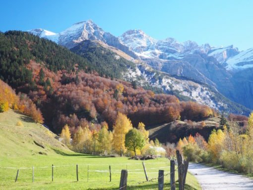 The Blazing Autumn Colours Of The French Pyrenees