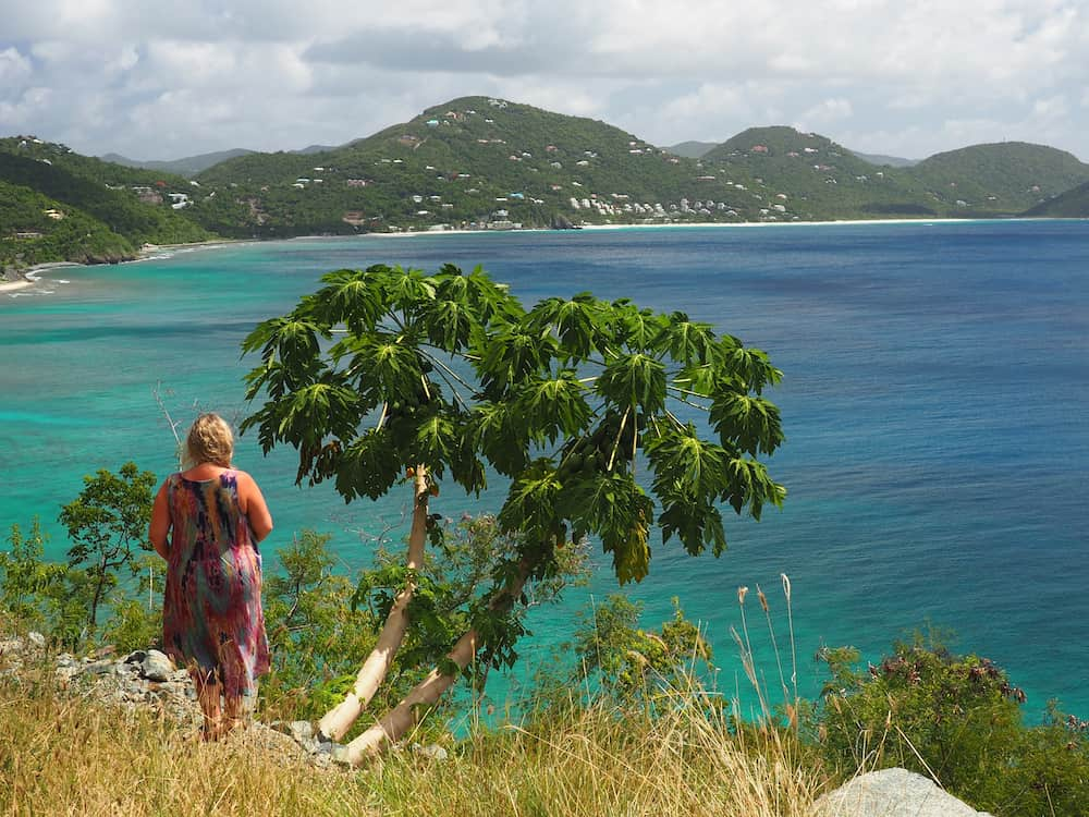 Nicky standing next to a papaya tree looking out over Apple Bay