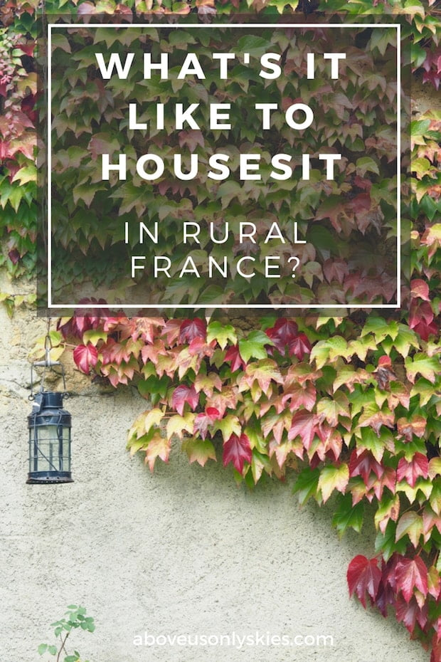 Everything you need to know about housesitting in the magnificent French countryside