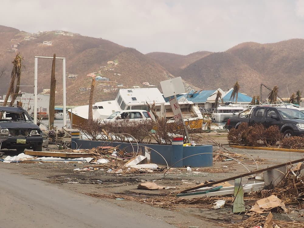 Damaged cars, boats and buildings