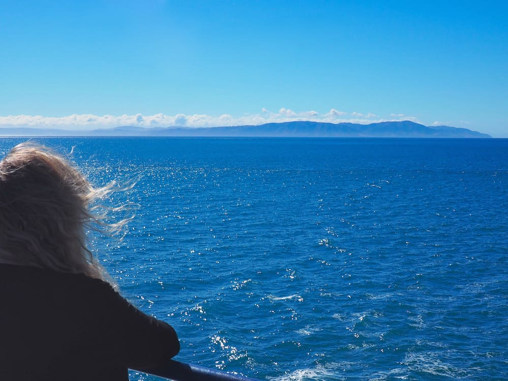 Nicky watching New Zealand's North Island from the ferry