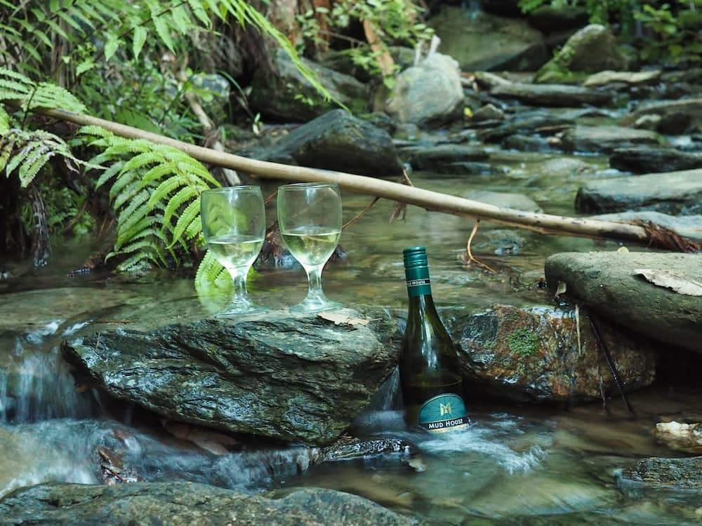 Bottle and two wine glasses chilling in the river