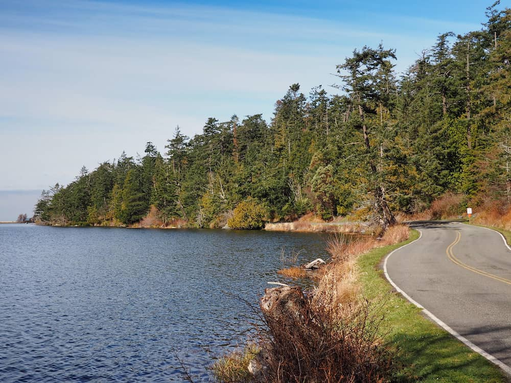 Road alongside Cranberry Lake