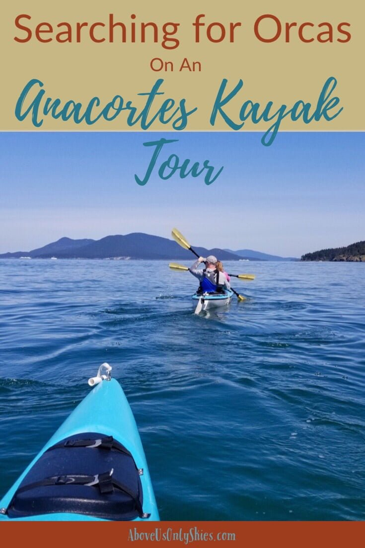 Number one on our Washington State wildlife wishlist was to come face-to-face with a killer whale - and with a resident population of orcas, an Anacortes kayak tour was an obvious choice #AnacortesKayakTours #SanJuanIslands #SeaKayaking #ExploreWashingtonState
