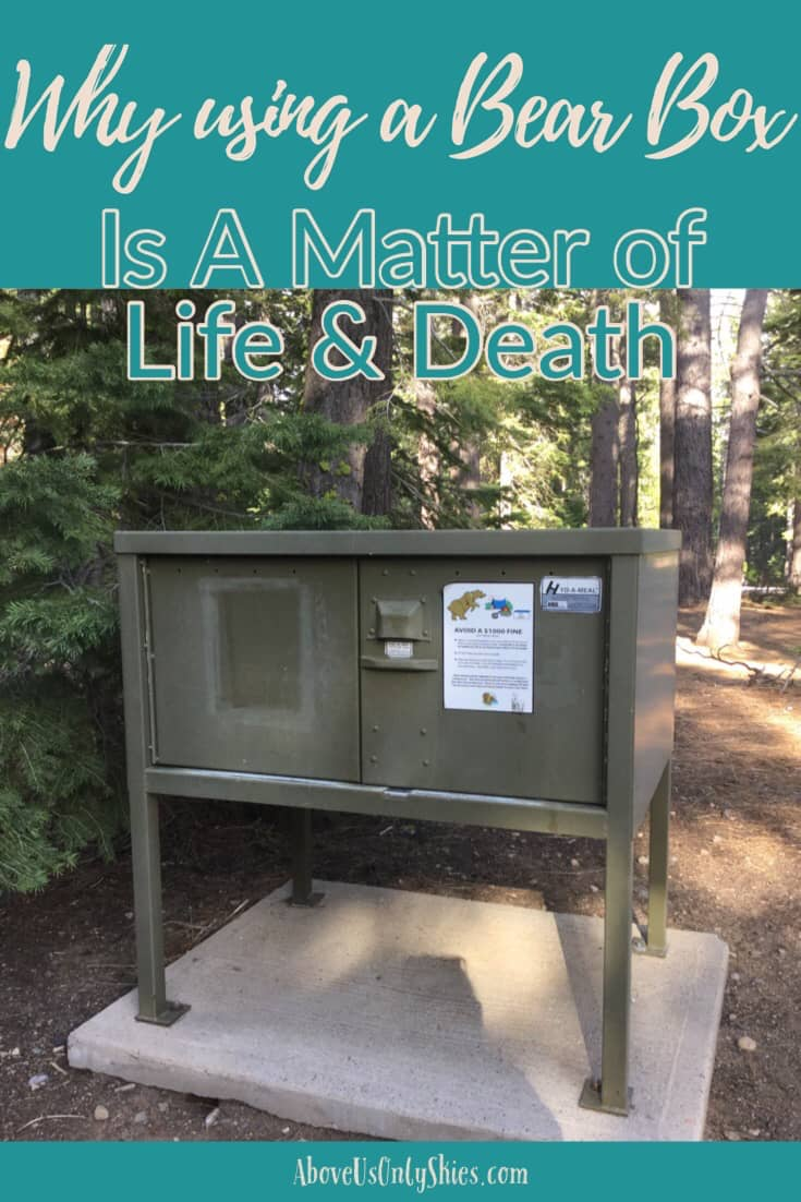 Using a bear box to store food is not only a legal requirement in certain Northern American national parks, it's also a potential lifesaver for any hungry bear that happens to wander into a campsite - here's why.. #BearBox #USANationalParks #TravelUSA #CaliforniaTravel