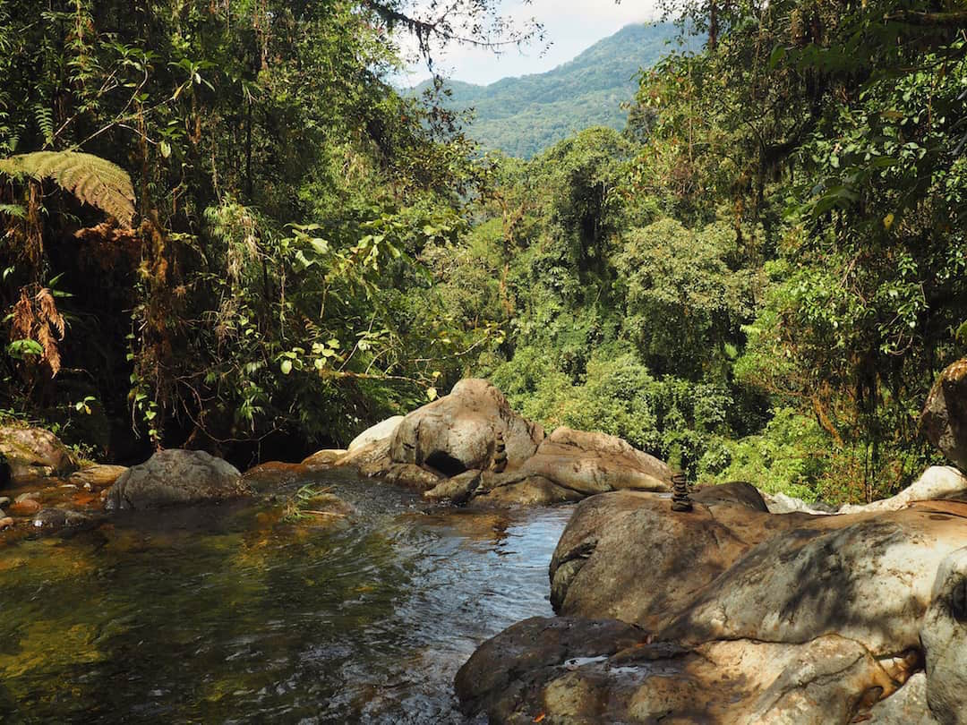 SEARCHING FOR THE LOST WATERFALLS OF BOQUETE