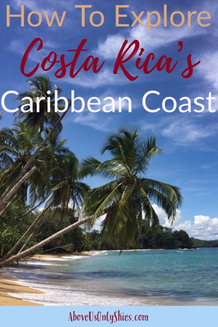 A relaxing visit to Costa Rica's Caribbean Coast means you can enjoy the delights of both rainforest and beach. In our guide we show you how to get the best out of this area which is teeming with biodiversity. See sloths, monkeys and poison dart frogs all in their natural habitat. #couples #sloths #caribbeancoast #costaricatravel