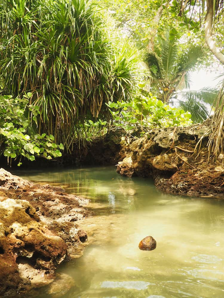 The natural pool at Piscina Natural, Cahuita
