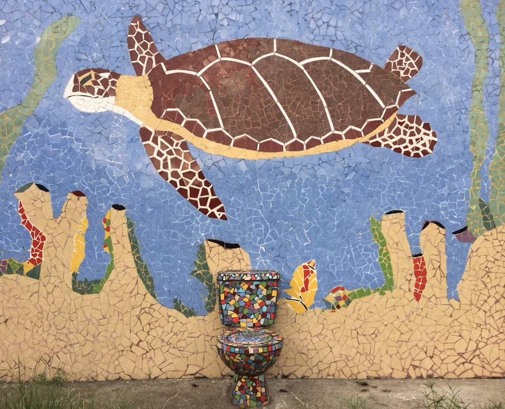 Turtle mosaic and toilet in Tortuguero