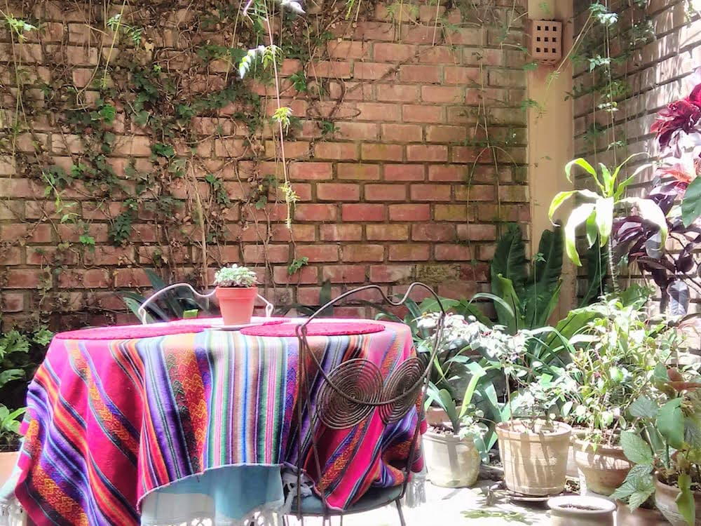 Patio garden at the Airbnb