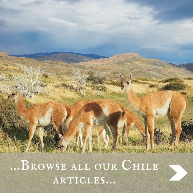 CHILE - home page