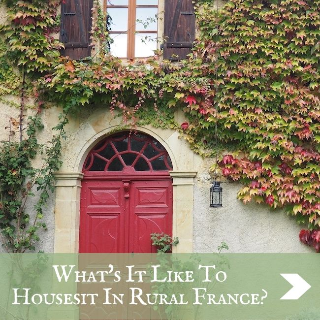 FRANCE - Housesitting