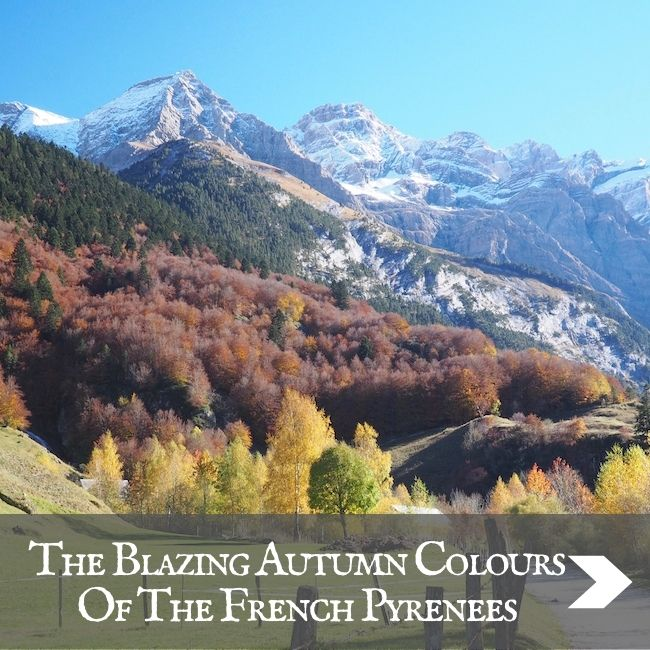 FRANCE - The Pyrenees