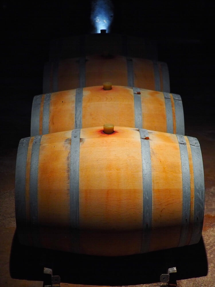 Barrels at Kaiken vineyard