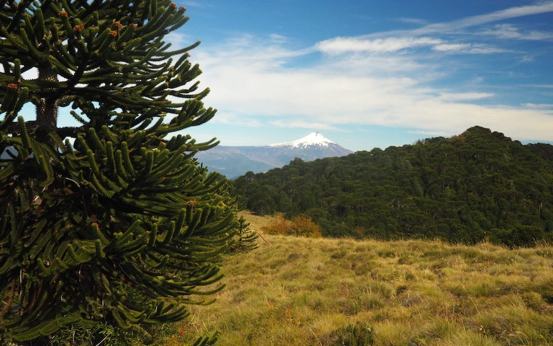 6 Of The Best Day Hikes In Chile