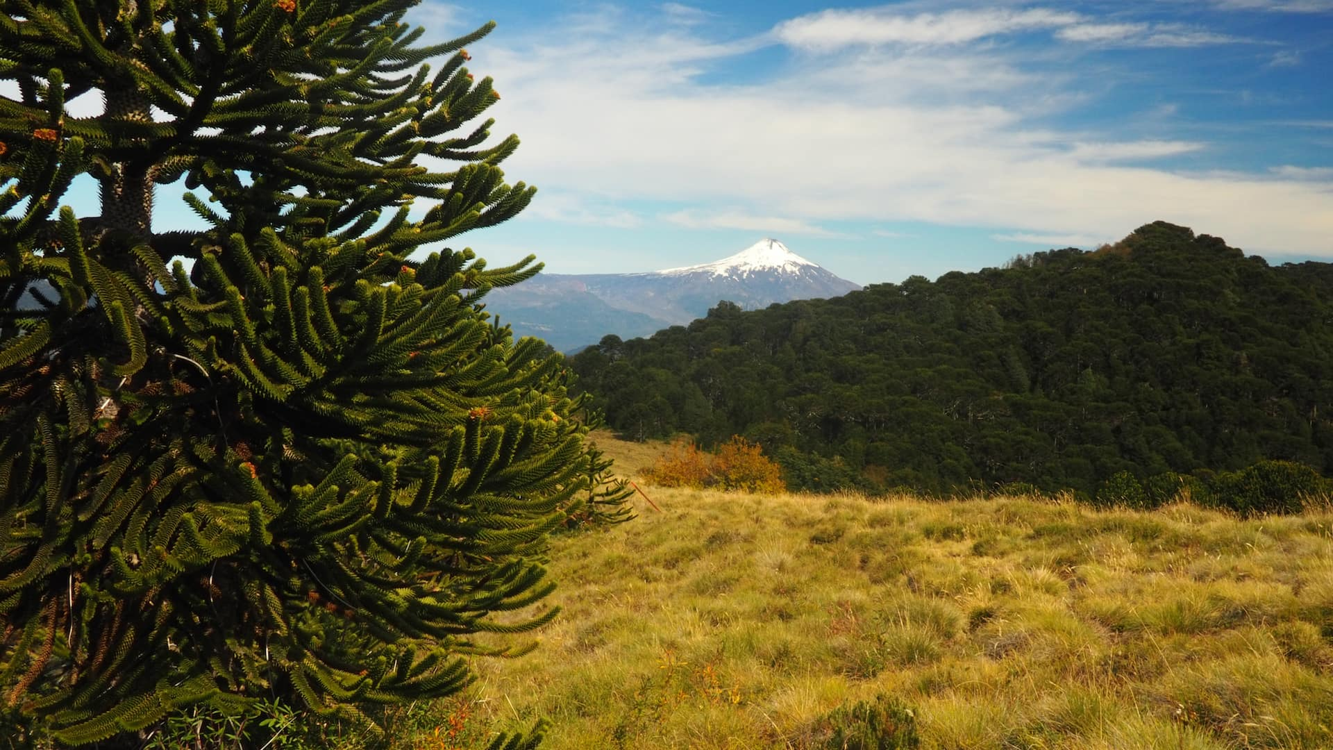 6 Of The Best Day Hikes In Chile | Above Us Only Skies