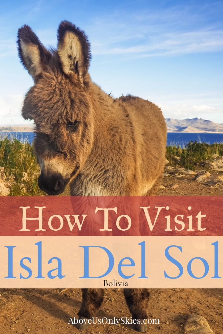 Isla del Sol is a gorgeous high altitude island on the Bolivian side of Lake Titicaca that's well established on the Gringo Trail - here's what to expect when you get there #isladelsol #copacabana #boliviatravel #visitbolivia #shaman #inca #backpacksouthamerica Above Us Only Skies