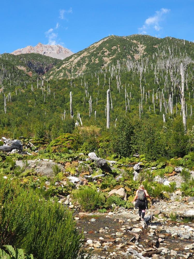 Volcan Chaiten Trail