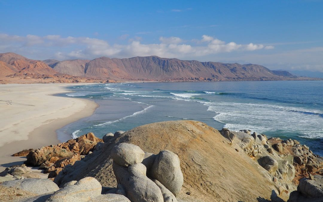 Pan de Azucar, Chile: Where Desert Meets The Ocean