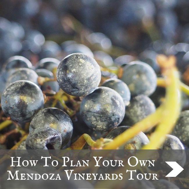 ARGENTINA - Mendoza wine tours
