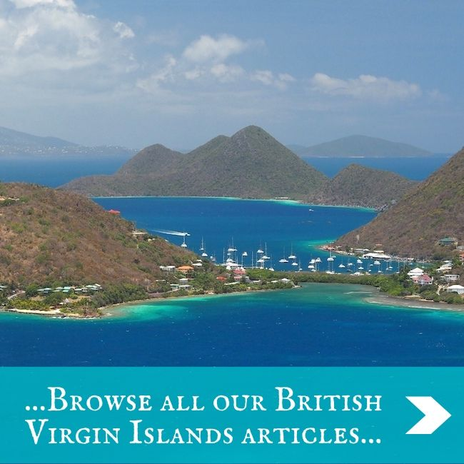 BVI - home page