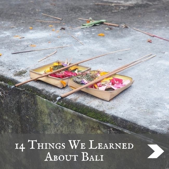 BALI - What we learned
