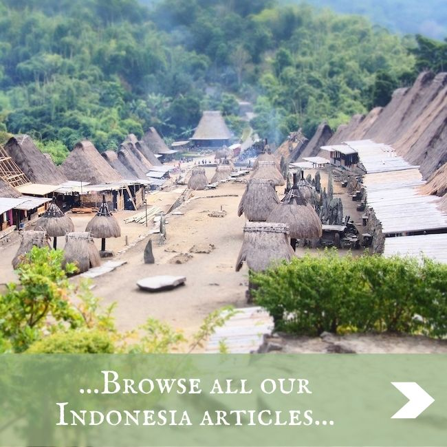 INDONESIA - home page