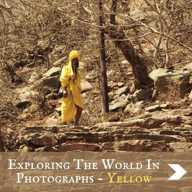 COLLECTIONS - Photos in Yellow