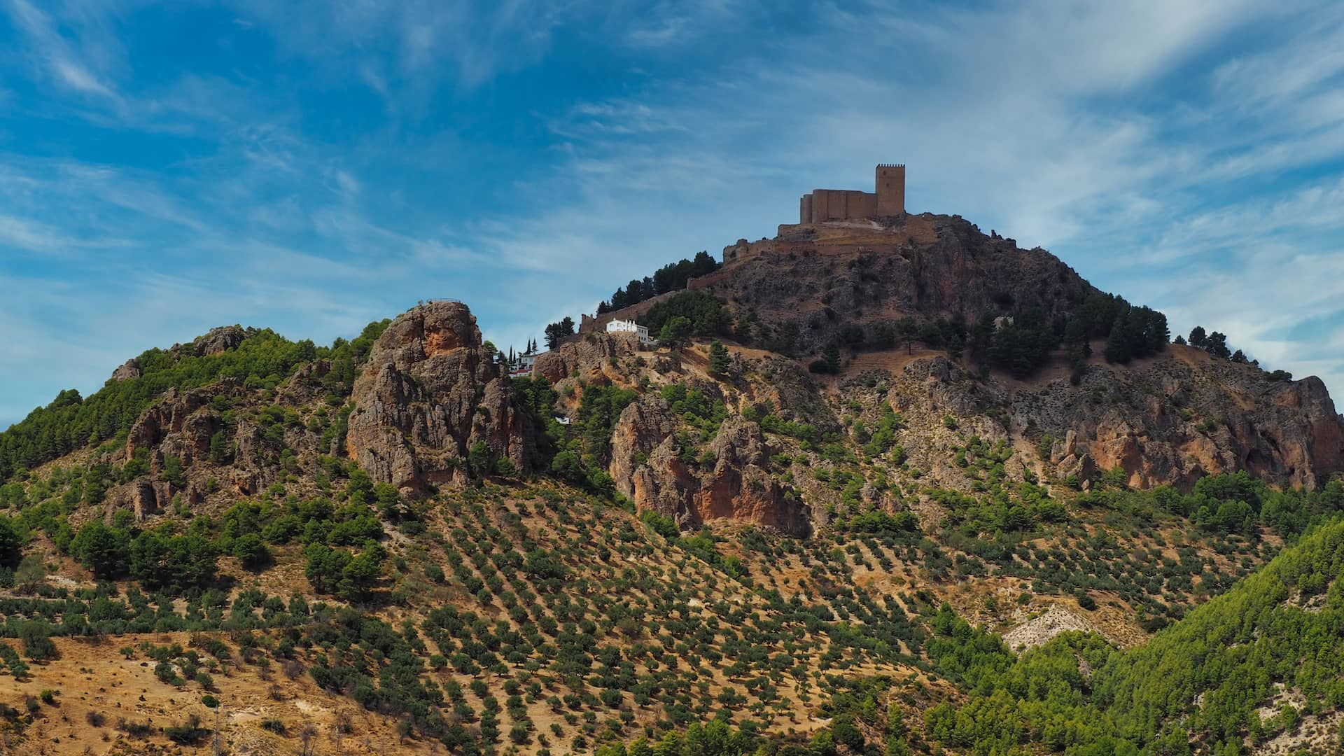 A castle sits atop a hillside, overlooking olive groves