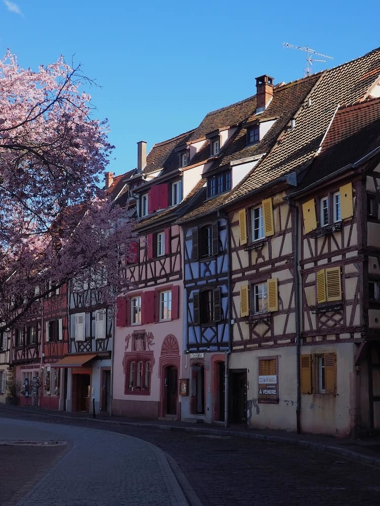 A multicoloured and half-timbered row of houses