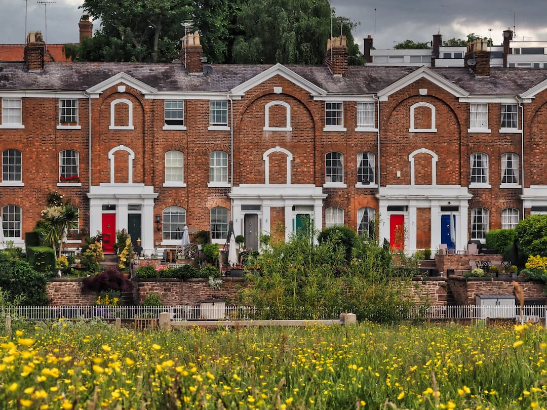 A field with yellow flowers in the foreground with red brick houses with white pillars in the background