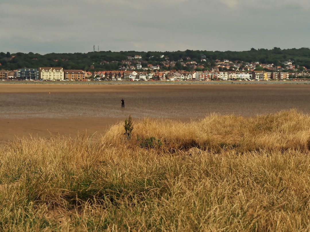 A grassy foreground, a beach in the middle ground and a row of buildings in the background